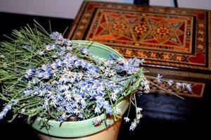 lavender-stems